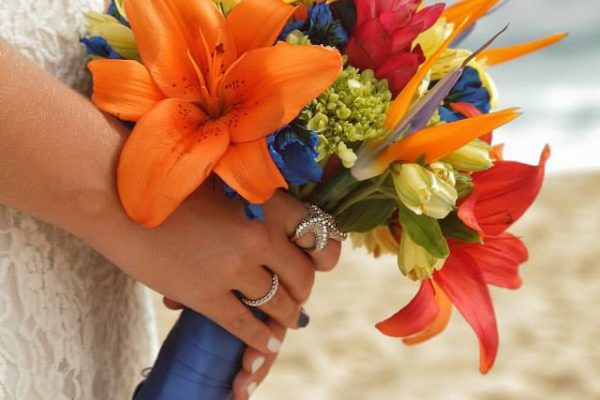 Simple Tropical Vow Renewals (1)