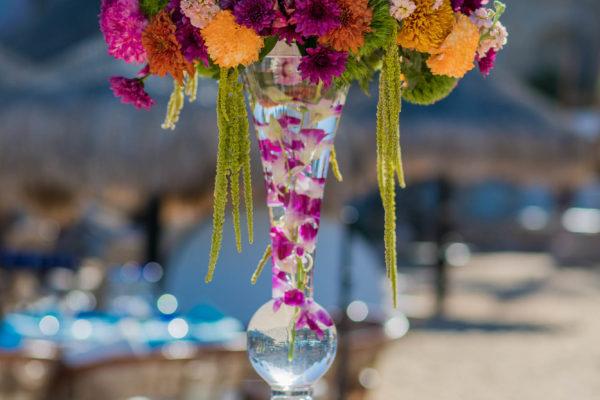 Unique Cabo Weddings (142 of 144)