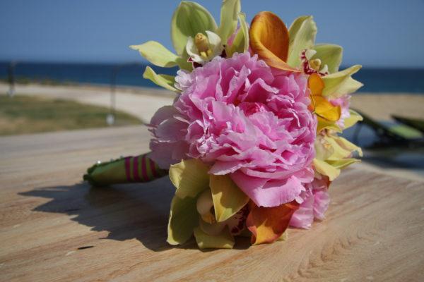 Unique Cabo Weddings (16 of 144)